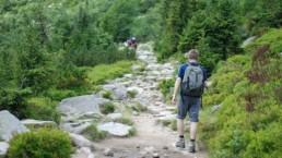 Karpacz Mężczyzna wędrujący górskim szlakiem
